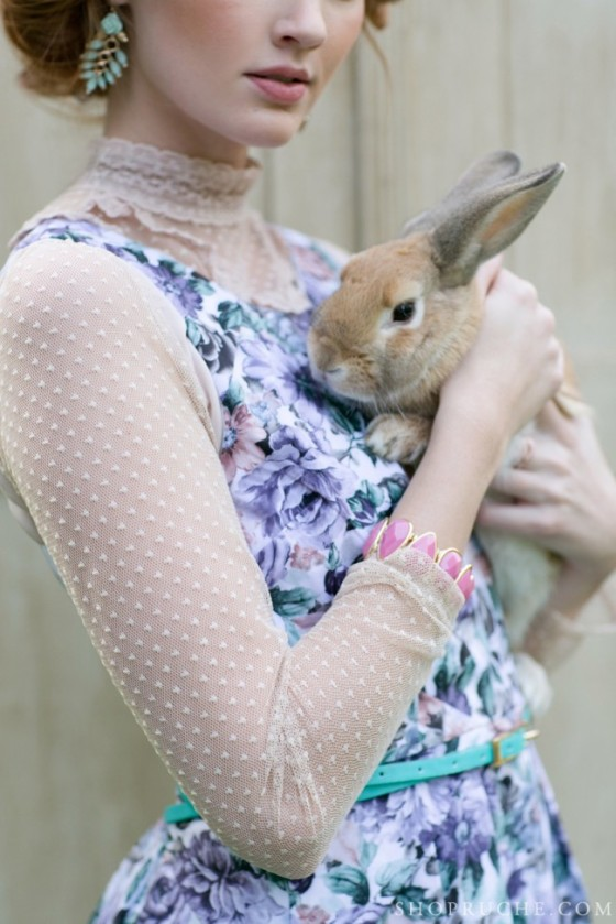 brown-bunny-e1361834249863