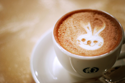 bunny-coffee-cute-easter-separate-with-comma-Favim.com-211288